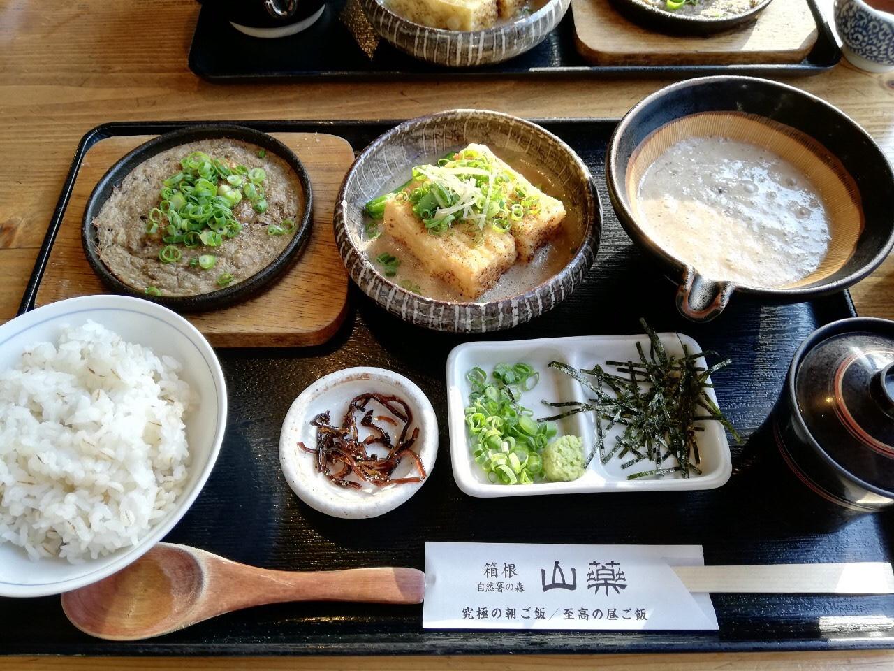【箱根】自然と温泉とグルメを満喫する旅♨_11