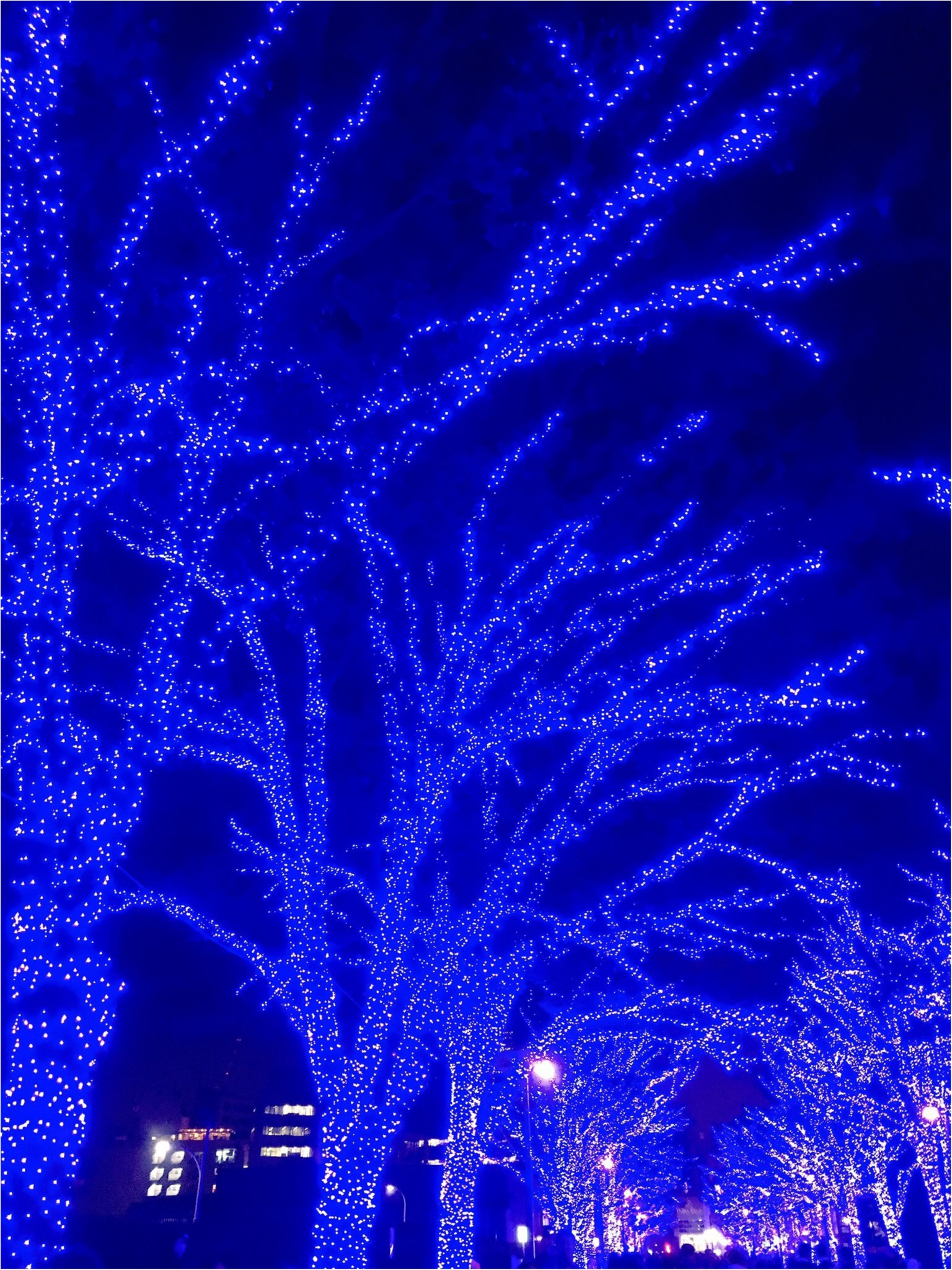 あの『青の洞窟』が渋谷に帰ってきた♡一面ブルーのイルミネーションは見逃し厳禁(*´ ˘ `*)_7
