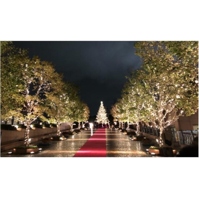 【恵比寿】クリスマス到来っ!恵比寿ガーデンプレイスのイルミネーションに惚れ惚れ♡_2