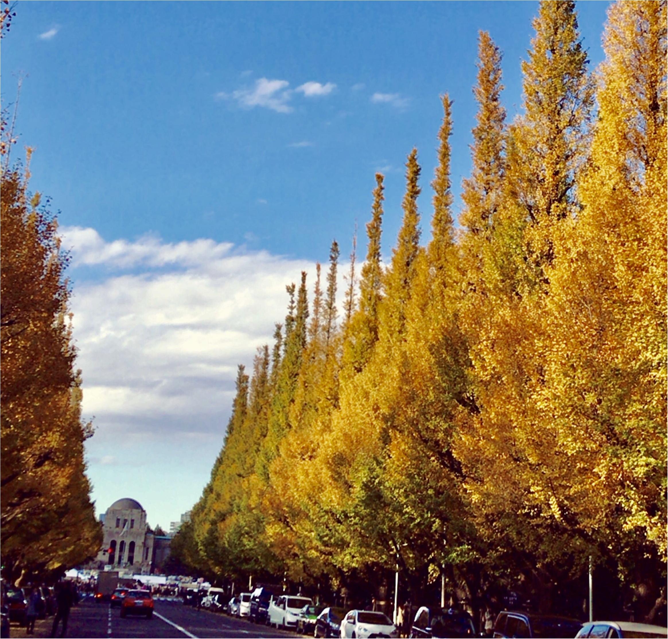 【フォトジェニックスポット】今日からいちょう祭り!神宮外苑いちょう並木が色づき始めました!今年の見頃は11月〇〇~!!_1