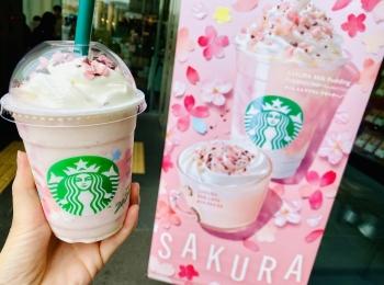 【スタバ新作】待ってた♡SAKURAシリーズ第1弾《さくらミルクプリンフラペチーノ》は絶対飲んで!