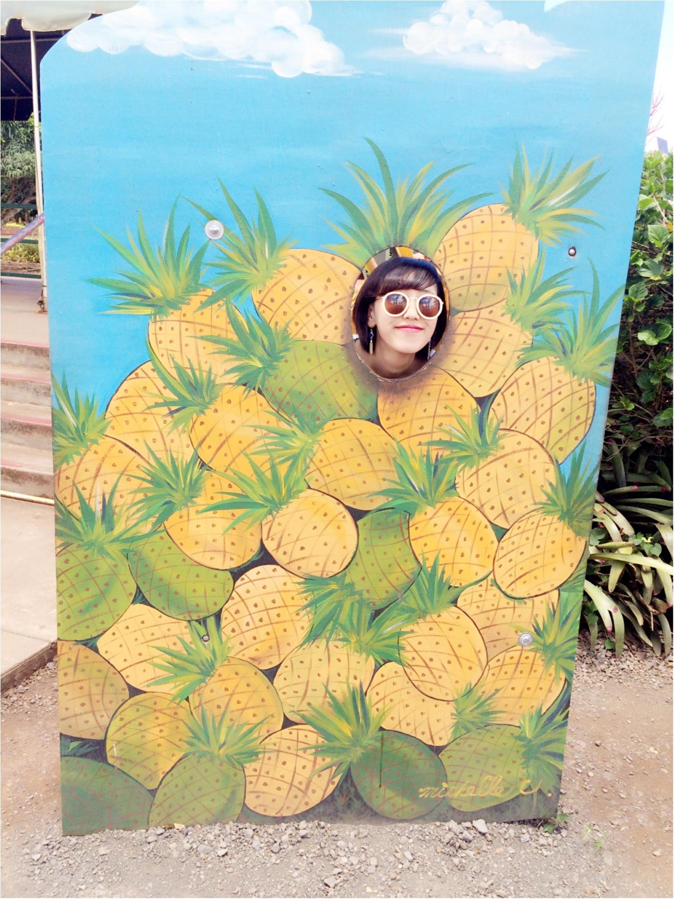 ハワイ女子旅特集 - 人気のカフェやグルメ、インスタ映えスポット、ディズニーなど旅する女子のおすすめまとめ_128