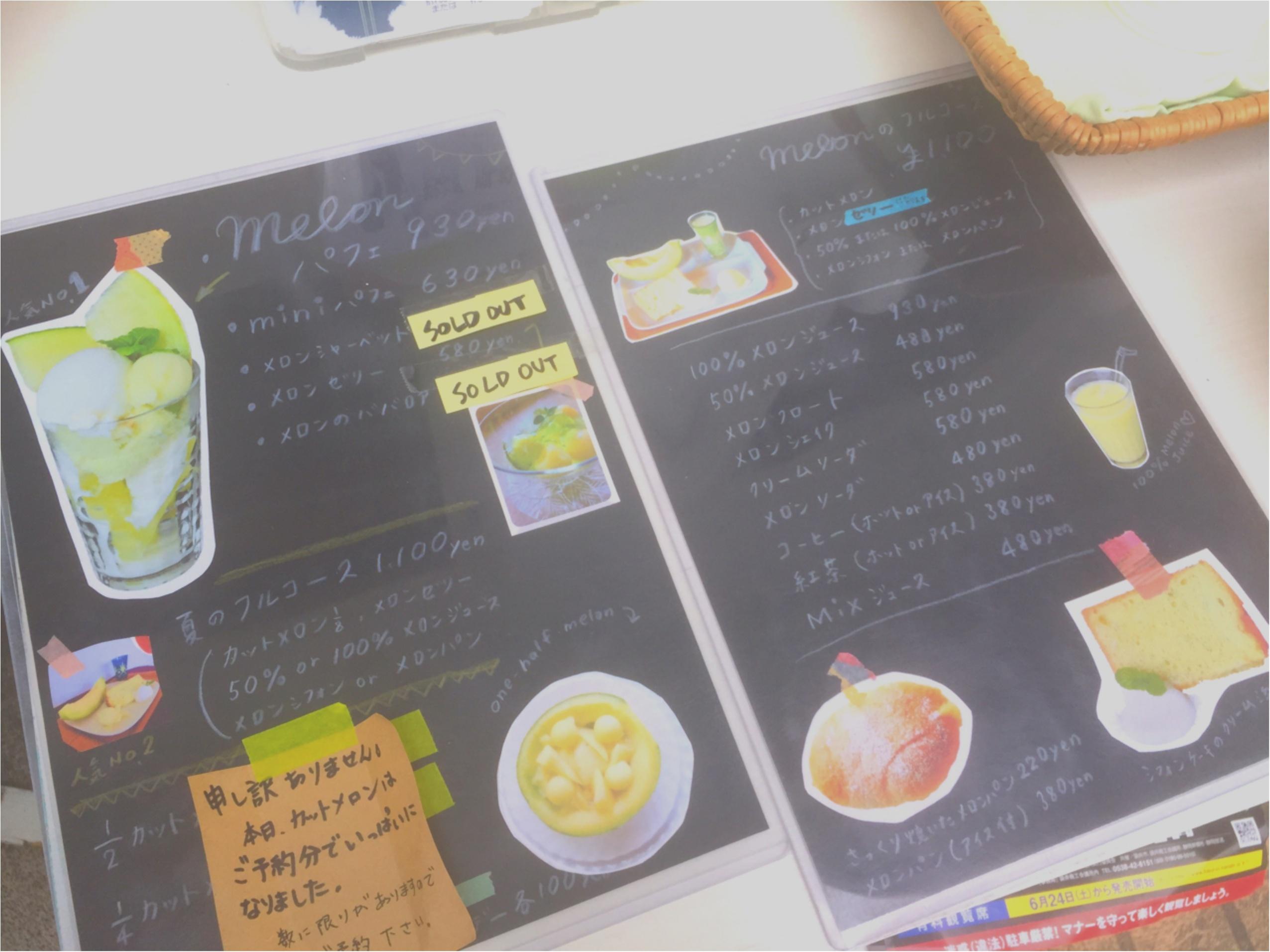 メロン好きは必見♡【名倉メロン農場】のメロンづくしのカフェに行ってきました♡_6