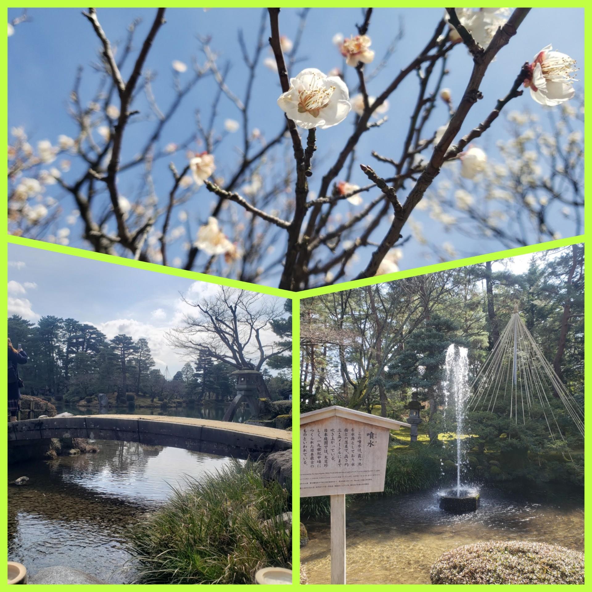 桜の名所・隅田公園はスカイツリーも! サンドイッチが絶品な、葉山のおしゃれカフェ【今週のモアハピ部ライフスタイル人気ランキング】_2
