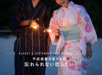 平成最後の夏だもの❤️ 忘れられない恋をしたい!まとめ