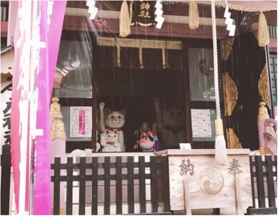 《夏が来る前に…》いま話題の縁結びスポット!浅草の今戸神社で○○の待ち受けをゲットして恋愛運UP♡_3