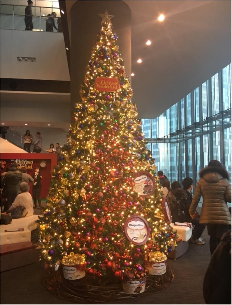 【クリスマスまであと1日!】クリスマスツリーでカウントダウン☆ クリスマスの新定番!話題のクリスマスショー 『クリスマスワンダーランド』のツリー♡_1