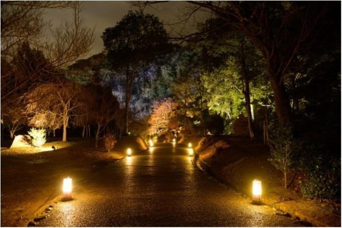 """大阪城ナイトウォーク「サクヤルミナ」も、「京都・嵐山花灯路-2018」も行きたすぎる! 関西の""""幻想的な夜""""が気になる♡_2_2"""