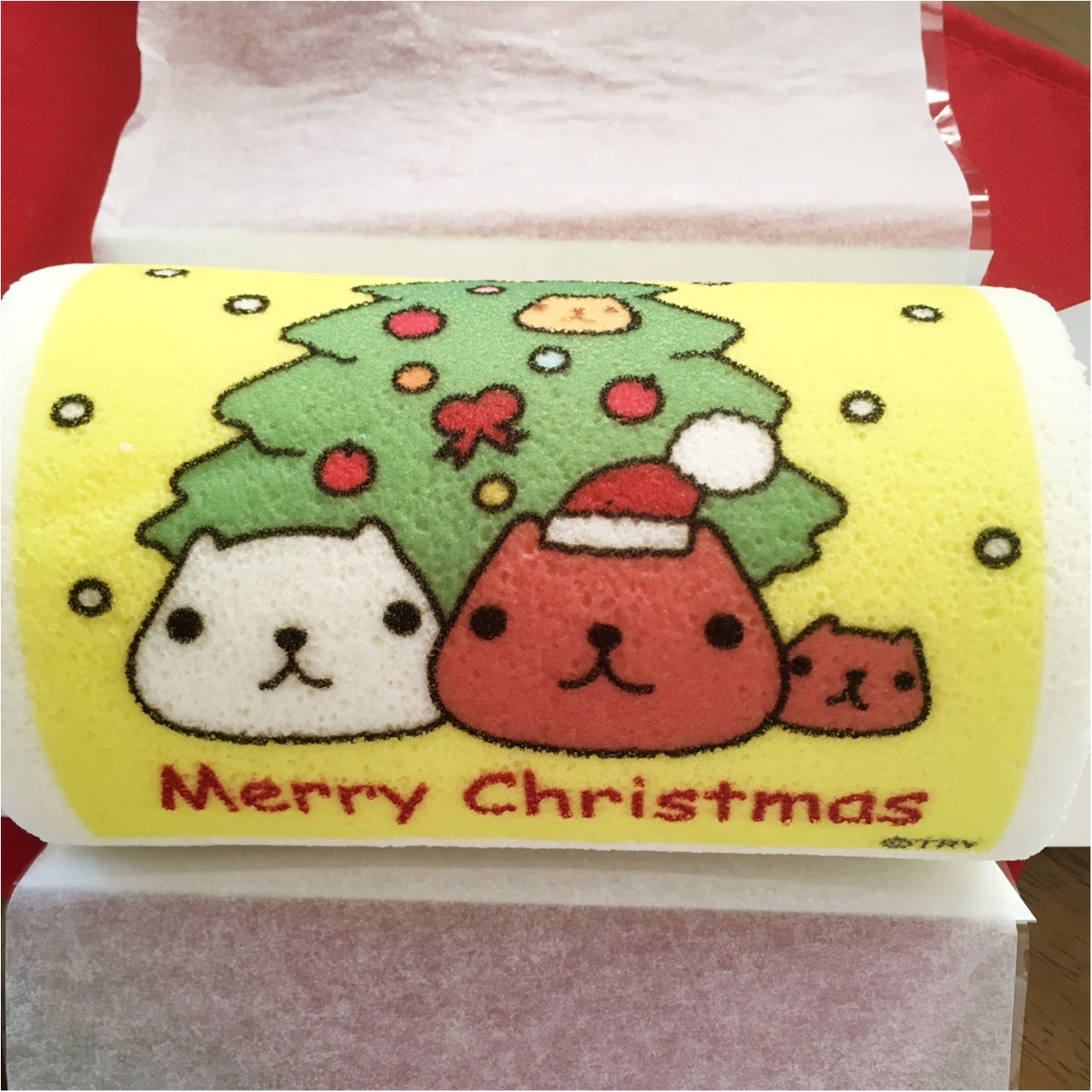 【キャラクター】クリスマスにはかわいいカピバラさんケーキで盛り上がっちゃおう(*>ω<*)♡ 【ケーキ】_4