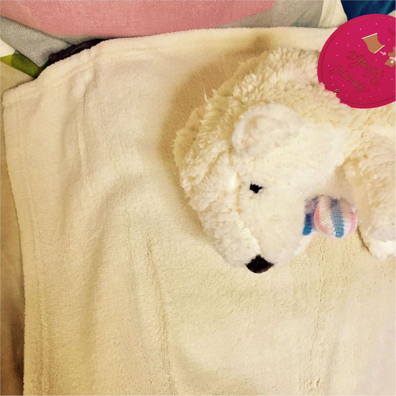 """""""不眠症""""の特効薬は、ライナスの毛布(ハリネズミ)!_2"""