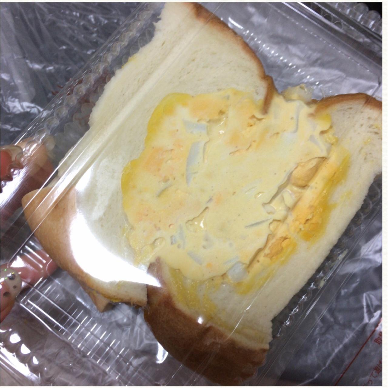 パン1斤まるごと?!東銀座の最強フォトジェニック萌断サンドイッチ♡_5
