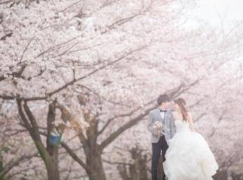 【桜ウェディング】桜満開の素敵なウェディングフォトを撮って頂きました♡