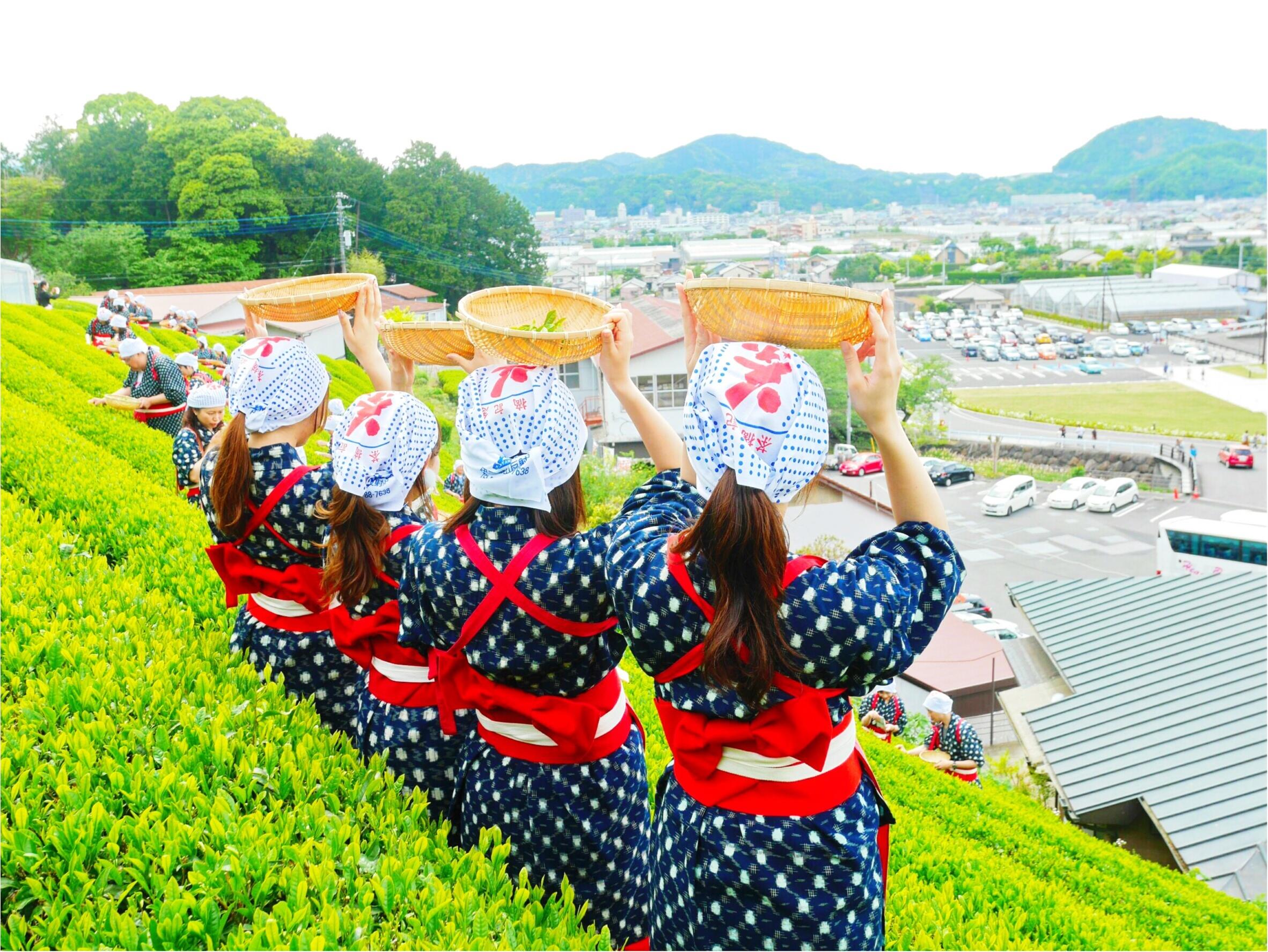 モアハピ1989の会で静岡バスツアー行ってきました♡_11