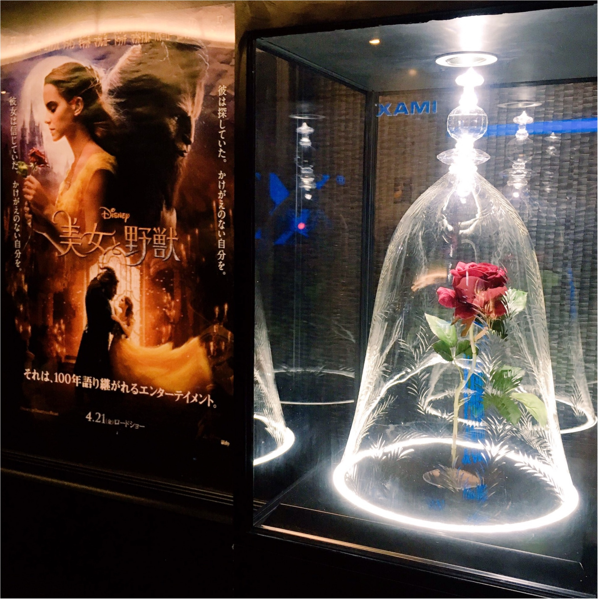 今日が公開初日!『#ベルイエロー』コーデで『美女と野獣』を観てきました…♡_3