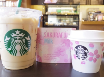 【意外とまだ売ってた!】スタバの桜シリーズ ミルクプリンを食べてみた♡
