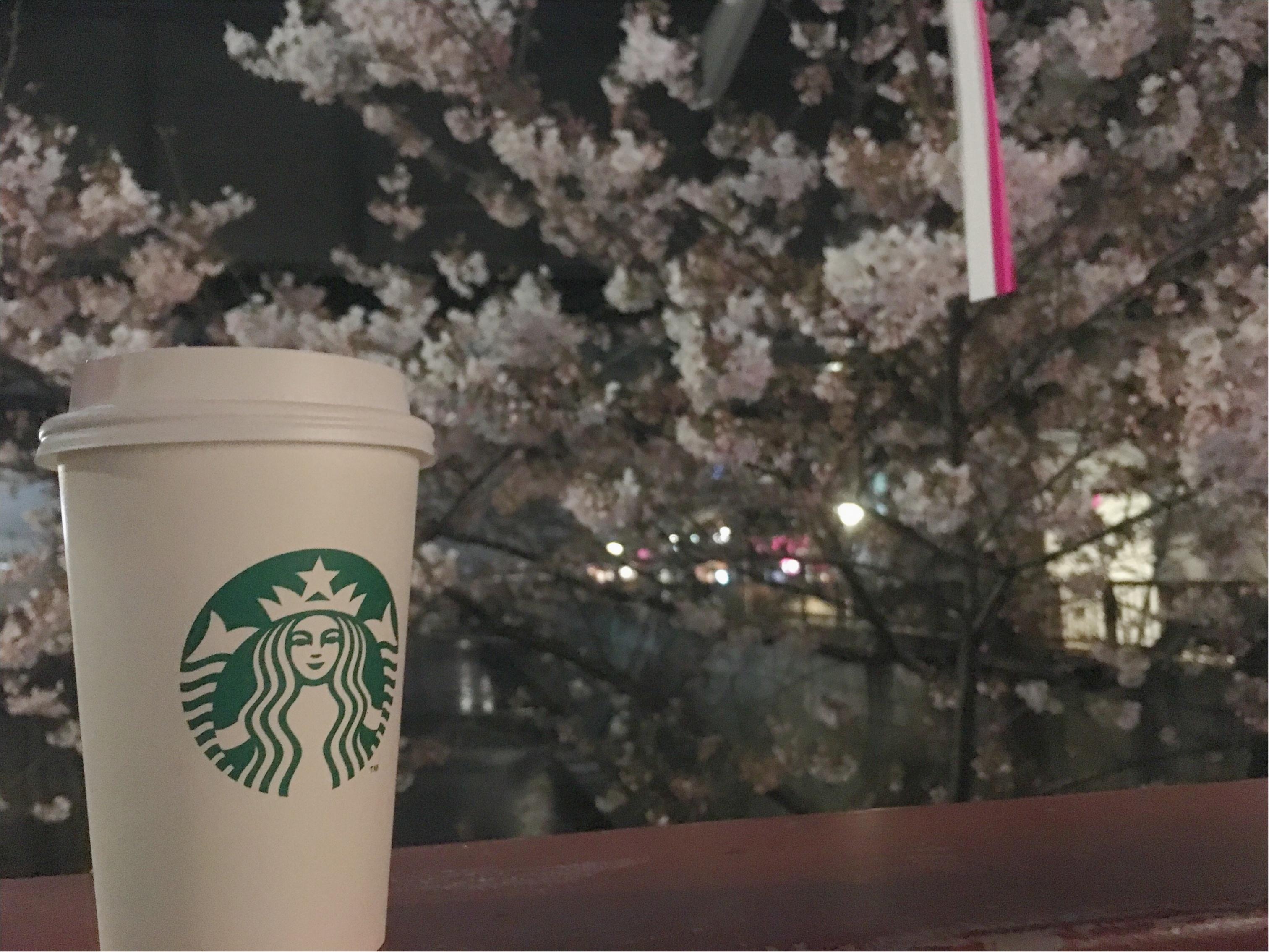 ★まだ間に合う!!昼はココで、夜はココ!東京お花見スポットご紹介!♩_6