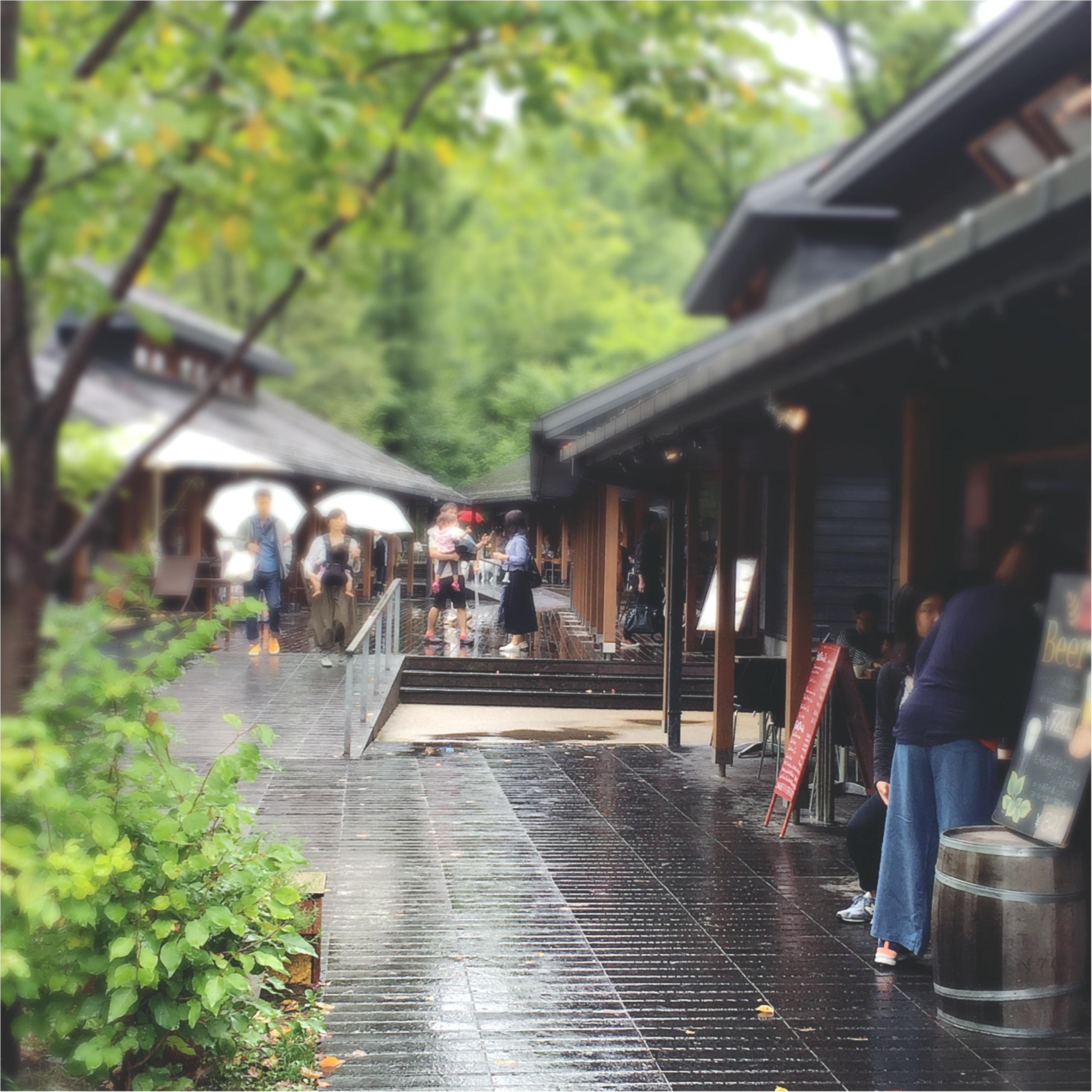 軽井沢女子旅特集 - 日帰り旅行も! 自然を満喫できるモデルコースやおすすめグルメ、人気の星野リゾートまとめ_74