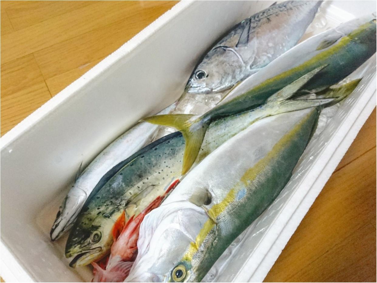"""【おでかけ】自分で釣ったら、美味しさも倍増♪ 大海原に囲まれて、""""海釣り"""" に挑戦してきました!_3"""