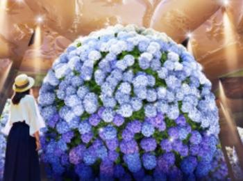 長崎女子旅に♡ 『ハウステンボス』が6月限定で開催する「あじさい祭」が華やかすぎる!