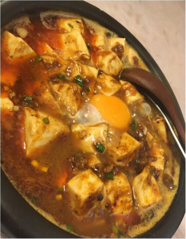 【また食べたい】佐藤ありさちゃんも食べていた美味しすぎる麻婆麺。_6
