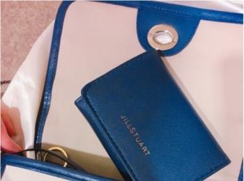 ネイビーは売れ切れ続出中!MORE11月号付録のジル・スチュアート財布はミニバッグコーデの強い味方