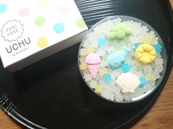 ≪京都お土産≫職人が作るキラキラ光る金平糖と可愛い落雁【UCHU WAGASHI】