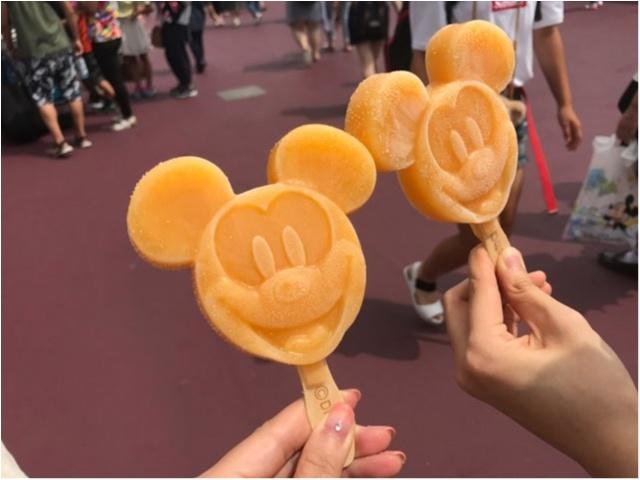 【東京ディズニーシー】に行ったら、食べておきたいもの★_4