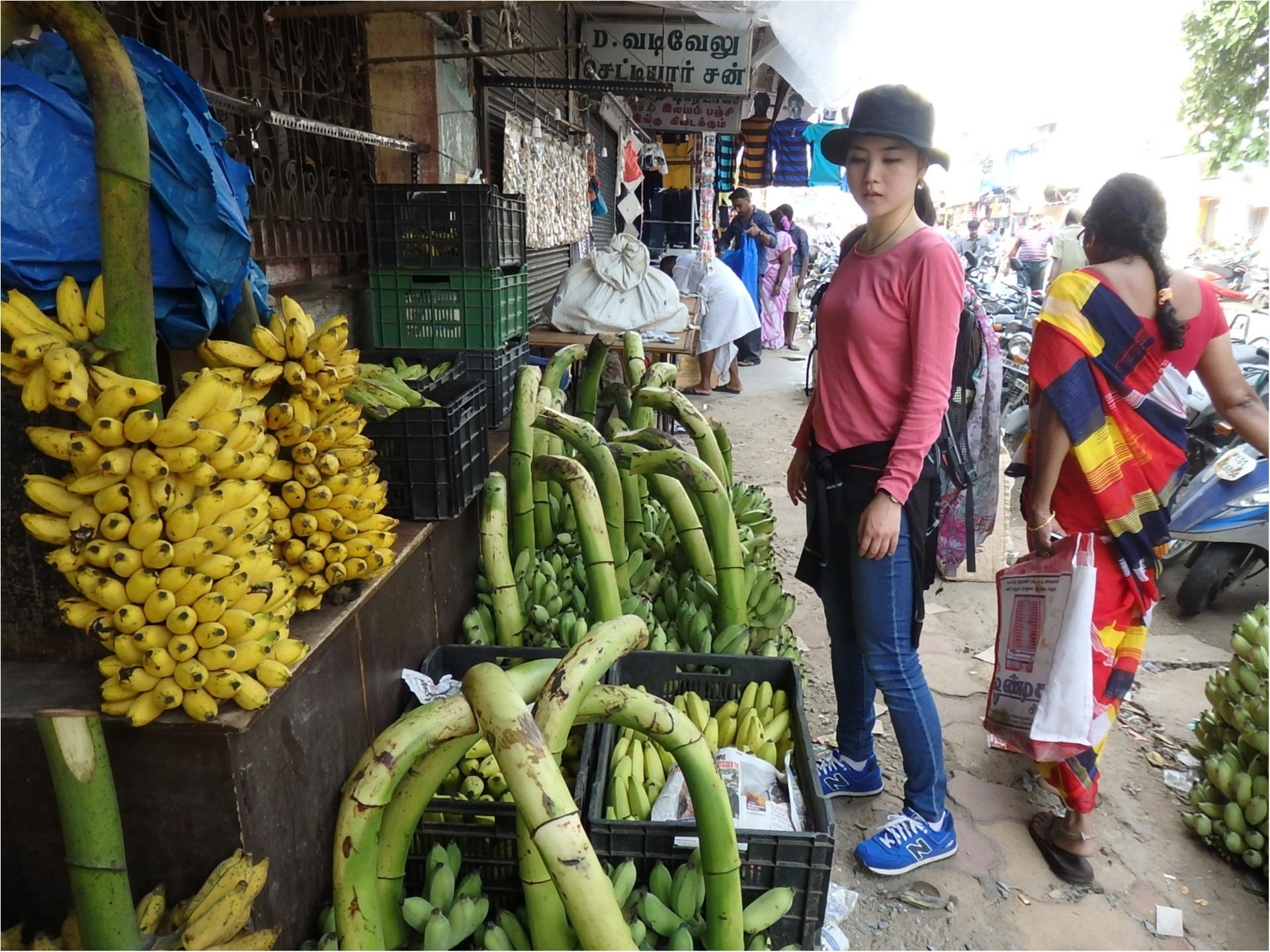 【インド旅】カレーが好きすぎて、本場へ旅してきました♪_2