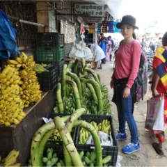 【インド旅】カレーが好きすぎて、本場へ旅してきました♪
