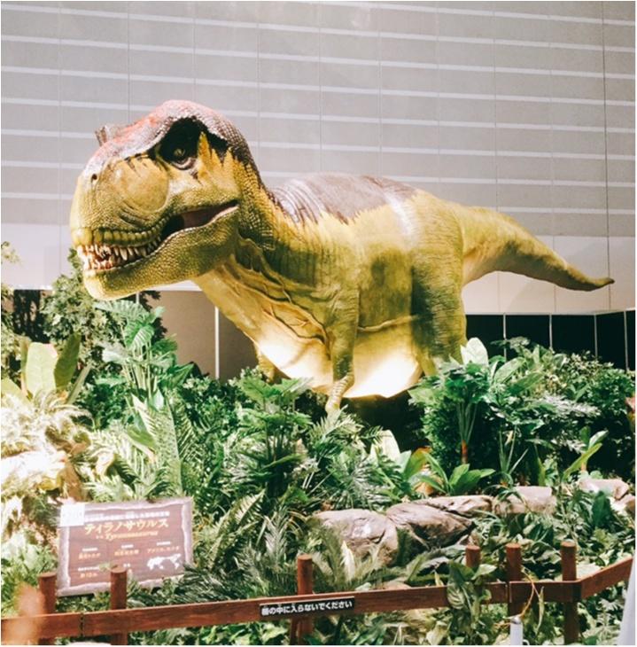 【9/3まで】大人も子供も楽しめる!!大迫力《横浜恐竜展2017》で動く恐竜の森を体験♪_13