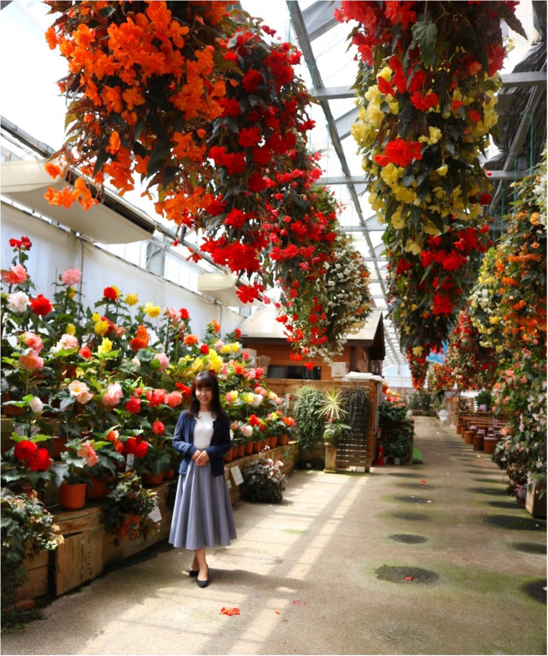 【栃木県】ベコニアが綺麗な花いちもんめ♡絶対 女子が喜ぶ場所!_5