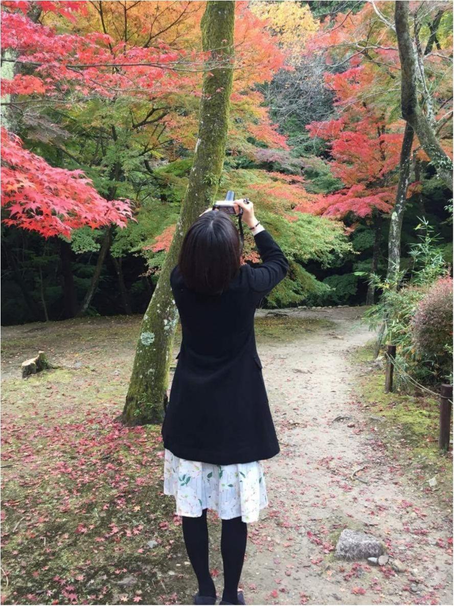【イケメン地蔵】話題の岐阜で秋を満喫♪_12