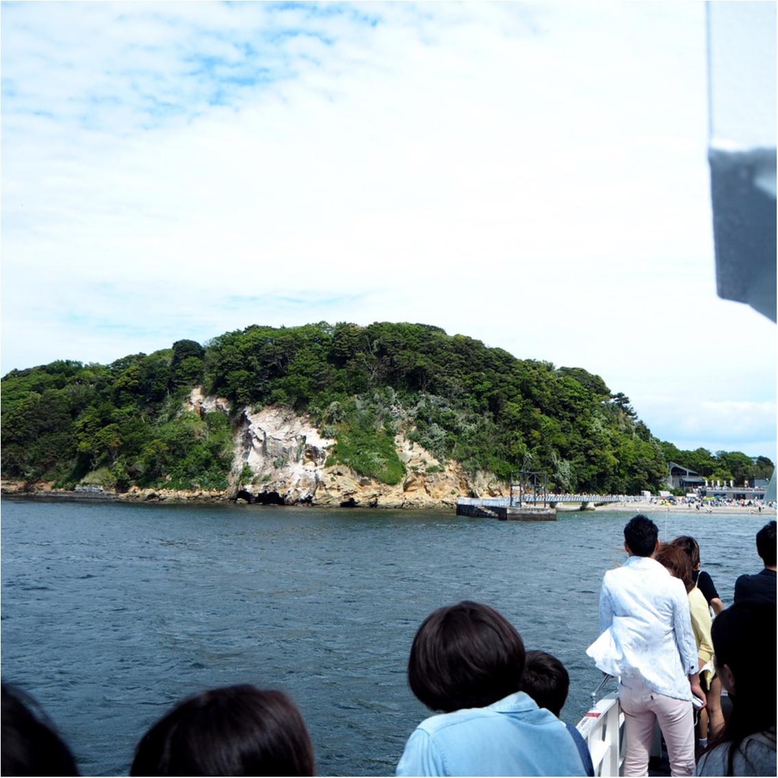 東京湾に唯一ある無人島「〇〇」に行ってきました♪_3