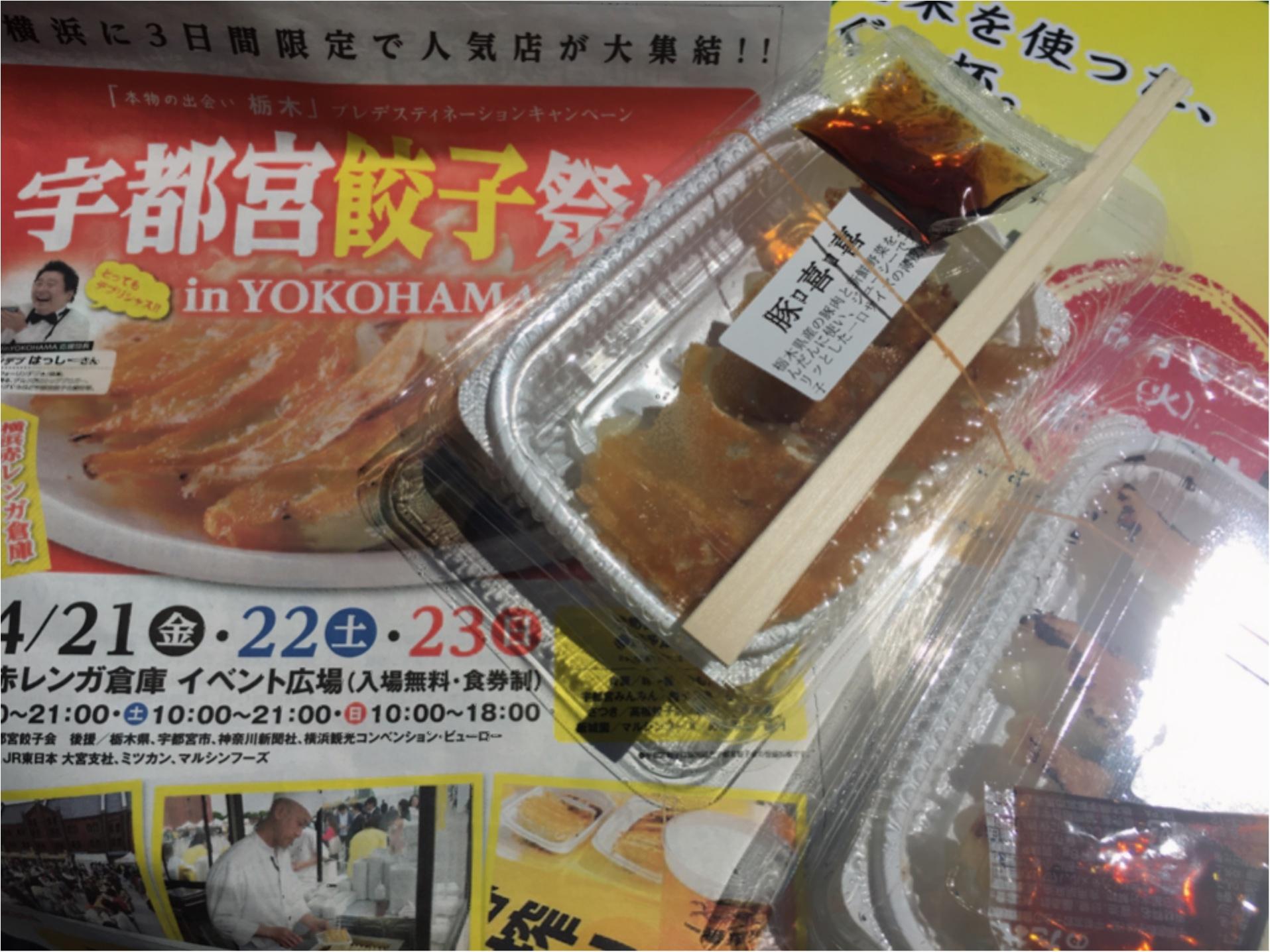 横浜赤レンガ倉庫★宇都宮餃子祭りで人気餃子食べ比べ!_2