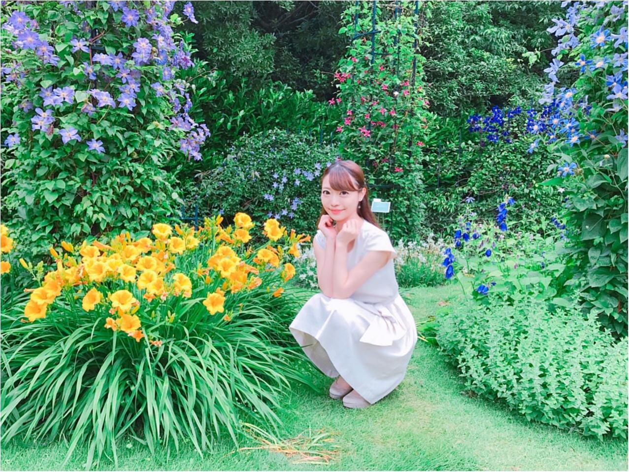 女の子の憧れ♡バラ園で素敵なひと時を、、(*^ω^*)_14