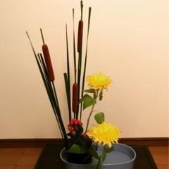【生け花】向日葵