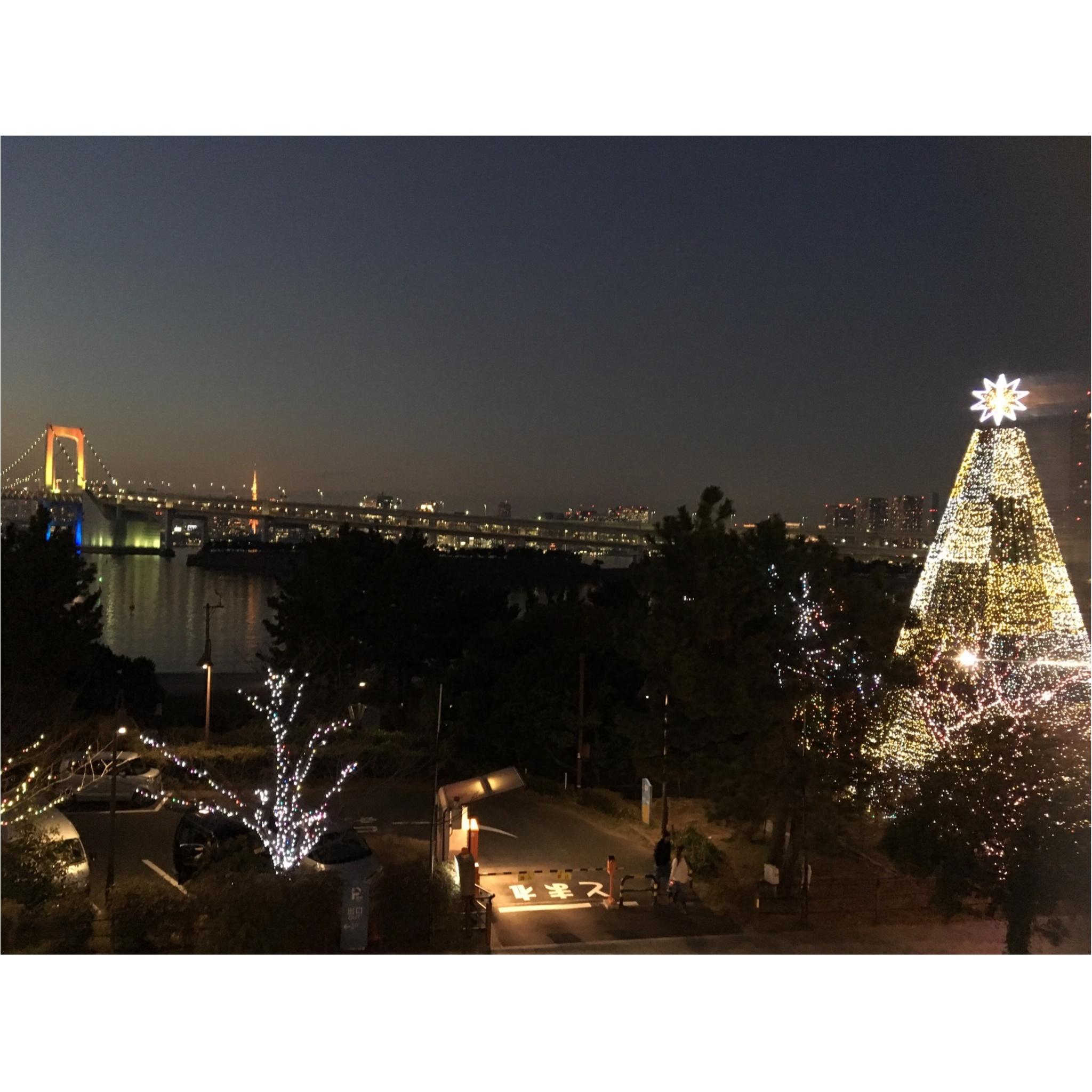 ※今週末まで※クリスマスデートにオススメ!!●●●で楽しむ最高にロマンチックな10のイルミネーション★_8