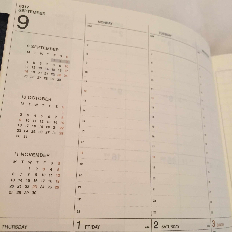 【2018年の手帳購入!!】アナログ派の私が10年以上手放せない手帳がこれ☆_4