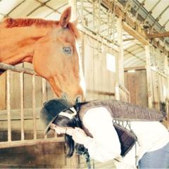 【モアチャレ】ずっとやりたかったこと!乗馬はじめました♡