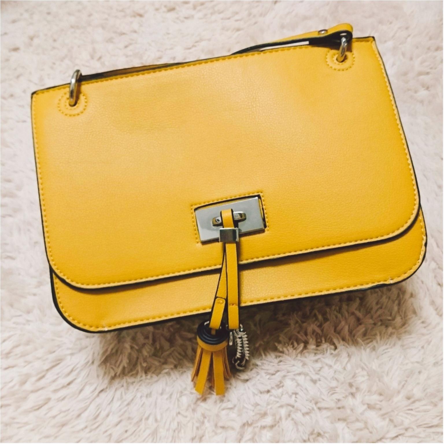 みんなどんなバッグ使ってるの? 憧れブランドもまとめて「愛用バッグ」まとめ♡♡_1_16
