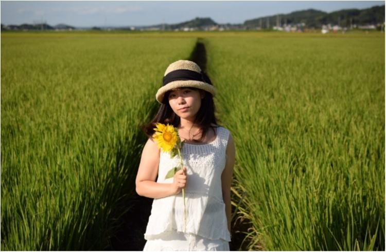【ジェニ旅】東京ドーム2個分のひまわり畑!! 『益子ひまわり祭』で平成ラストサマーを全力で楽しむ♡_7