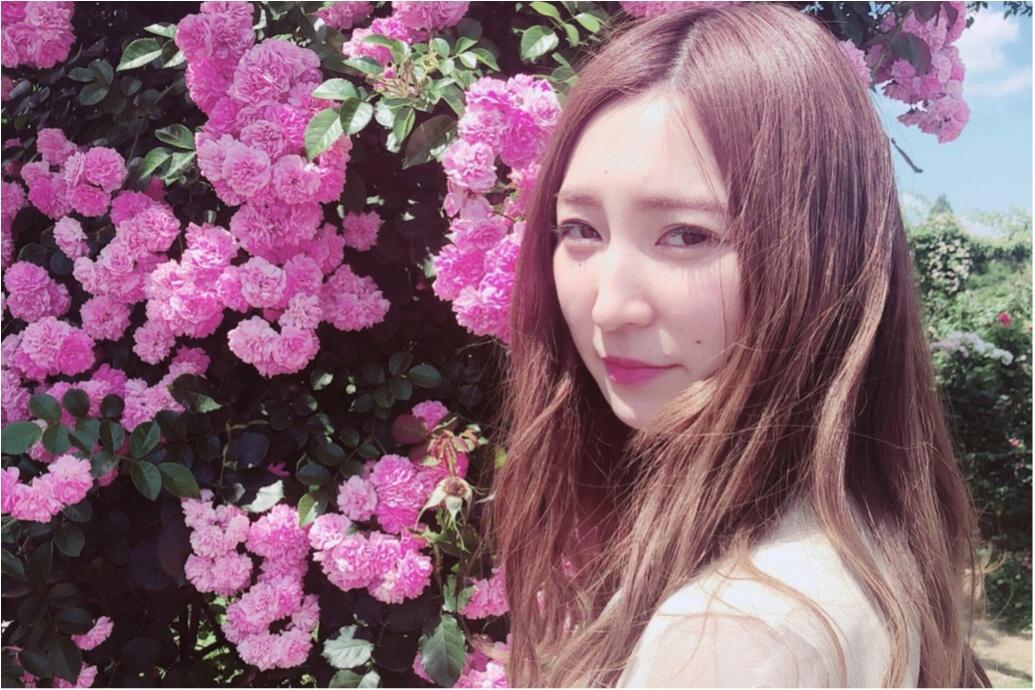 ◆◇…千葉県にある「京成バラ園♡」へ行ってきました!!ピンク色のアイスクリームも…?♡_2