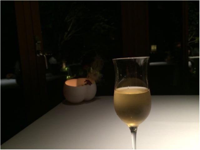軽井沢女子旅特集 - 日帰り旅行も! 自然を満喫できるモデルコースやおすすめグルメ、人気の星野リゾートまとめ_39