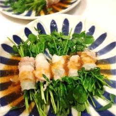 【簡単!】豆苗キッチン菜園のススメ♪【安い!】