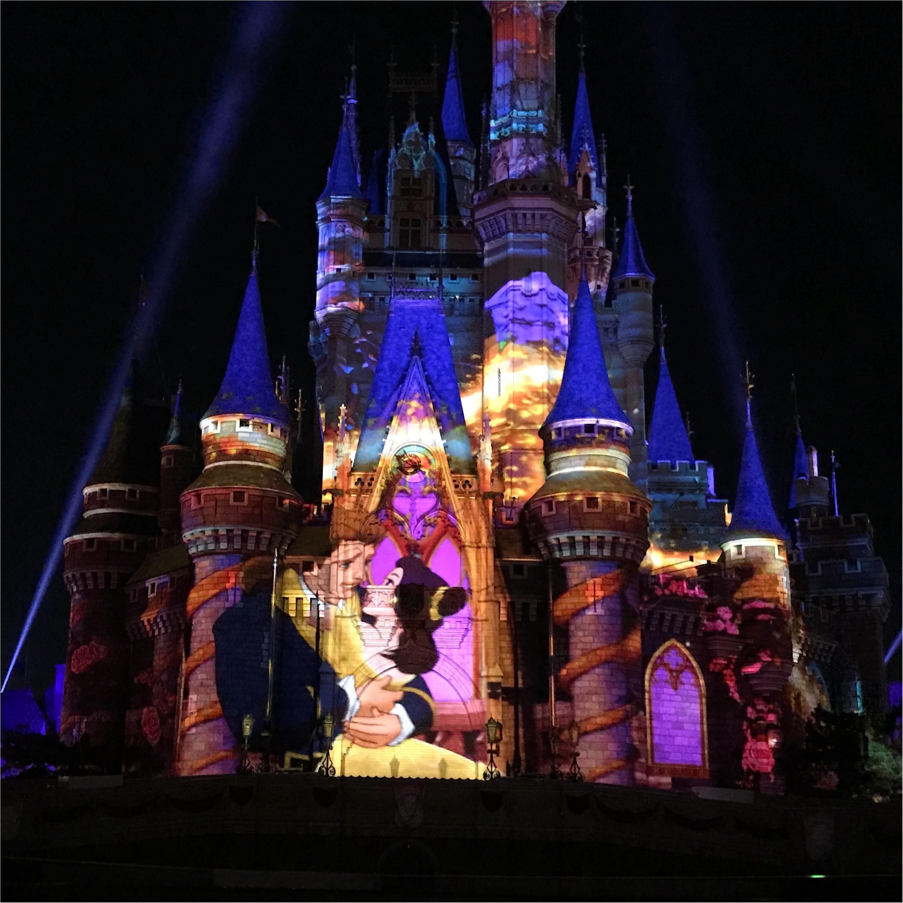 【Celebrate!Tokyo Disneyland】に当選したら絶対に知っておくべきポイントとは❤︎_6