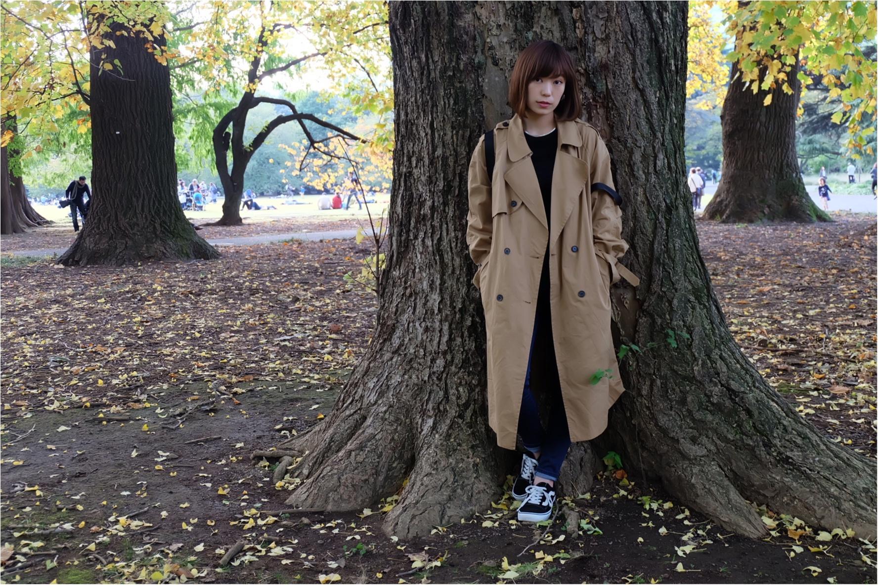東京でも絶景の紅葉が!《新宿御苑》で秋が始められますよ〜!!フォトスポット&コーディネートも合わせてご紹介!_7