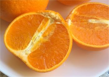 【フルーツ好きがオススメする幻の柑橘】ビタミンCが豊富な柑橘類の大トロともいわれる「せとか」で美肌をゲットしませんか♡
