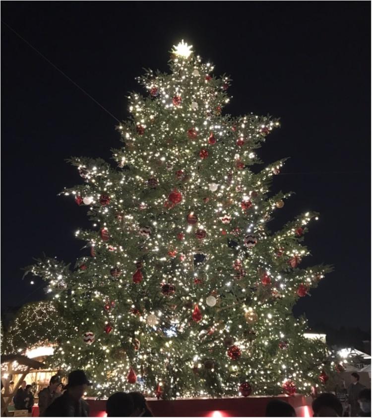 【X'MAS】今年もこの季節!デートにぴったり♪恵比寿で見るべきクリスマスツリーはこの2つ♥_1