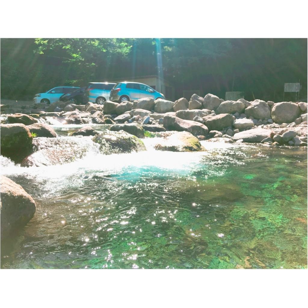 暑い夏は大自然で楽しむ!都心から2時間半で楽しめる《  マス釣り 》!!_4