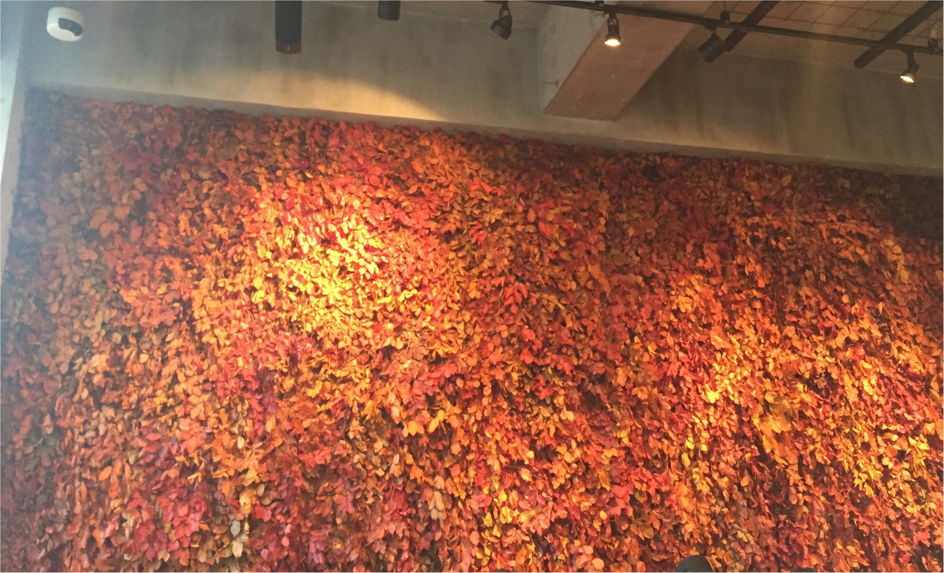 【表参道/CAFE】一足早い秋を感じたいならココ❤︎ニコライバーグマンカフェの秋仕様がとっても可愛いんです!_4